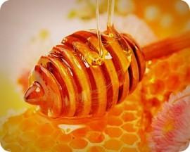 Кыргызский союз пчеловодов